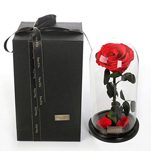 Géant fleur immortelle,Boîte de couverture en verre Petit prince Roses Fleurs Éternelle Décoration Le jour de noël-rouge