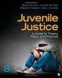Juvenile Justice: A Guide to Theory, Policy, and Practice by Cox, Steven M., Allen, Jennifer M., Hanser, Robert (Rob) D., (2013) Paperback