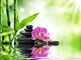 Leinwandbild, Blooming Orchidee, Entspannung, Erholung, Bambus, Wasser, Bild, Wandbild, Wanddeko, Leinwand, Wanddekoration, grün, pink, grau