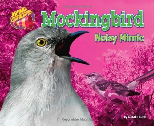 mockingbird-noisy-mimic-animal-loudmouths-by-natalie-lunis-2011-08-01