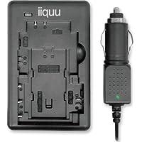 iiquu 535ILBCSON02 Chargeur rapide pour batteries à lithium-ion de Sony