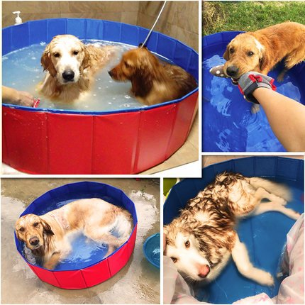 Pro Goleem Foldable Plastic Dog Paddling Pool For Swimming Playing Bathing 120cm 30cm Animal Shop