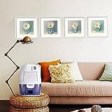 Yorbay Luftentfeuchter(500ml Wassertank,250 pro Tag,Raumgröße ca.10-15 m²)elektrisch Raumentfeuchter gegen Feuchtigkeit , für Schlafzimmer, Wohnzimmer, Keller, Garage usw - 5