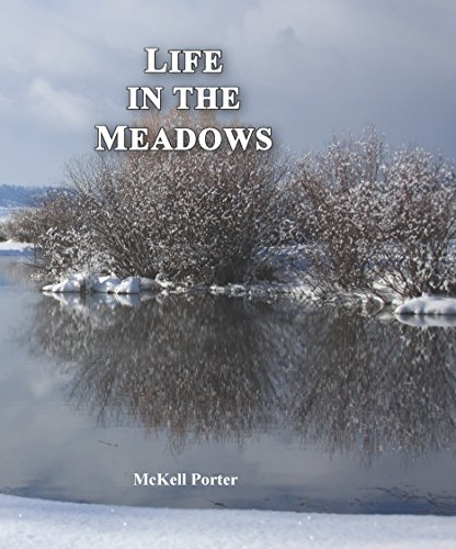life-in-the-meadows-english-edition