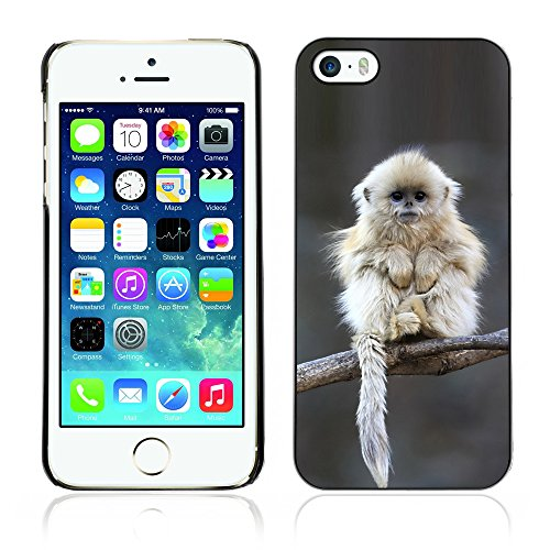 Graphic4You Lustig Niedlich Affe Tier Design Harte Hülle Case Tasche Schutzhülle für Apple iPhone 5 und 5S Design #1