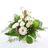 Blumen Online Preisvergleich Test Januar