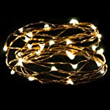 Toamen 2M 20LED Button Cell Powered Silver Copper Wire Mini String Lights (Beige)