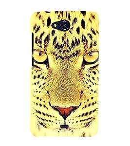 Fuson Designer Back Case Cover for Micromax Bolt Q338 (Cheetah Cheetah Eyes Fiery Look Spots Cheetah Face)