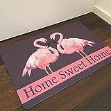 Fussmatte Flamingo Home Sweet Home mit Filzoberfläche für Haustüre, Flur, Innen und Aussen, rutschfest, Praktische Schmutzfangmatte, Fussabtreter, Fußabstreifer, Größe 44 x 67 cm
