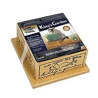 اصيص سمارت كات 3844 كيتي للعشب القابل للاكل من اجل القطط