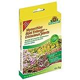 Neudorff micorriza raíz ampliadora plantas para plantas ericáceas 4x 5g