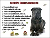 Merchandise for Fans Blechschild/Warnschild/Türschild - Aluminium - 15x20cm Eigentumsrechte Motiv: Shar Pei/Faltenhund (01)