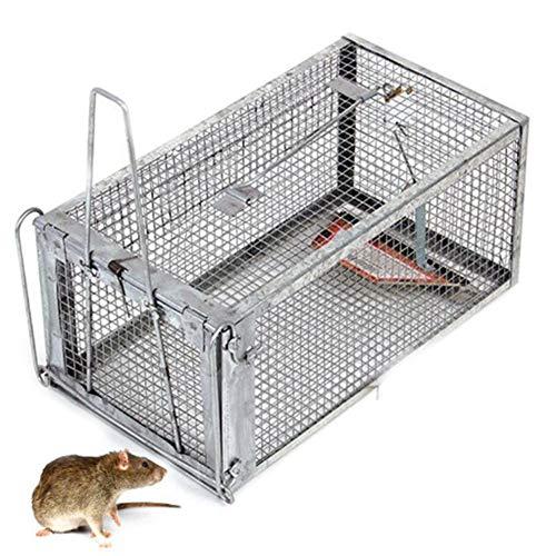 RANHOME Cage Humane Trap Catch, Rats Souris à Rats cliquets à Simple Fourrure, fauteuils, Autres Animaux de Plein air