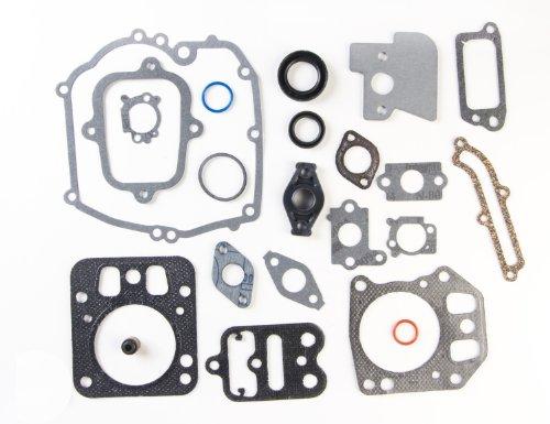 Briggs & Stratton 795442 Motordichtsatz ersetzt 792384/694090/698156