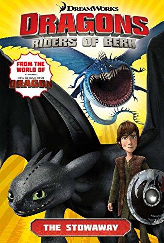 Dragons, riders of Berk.