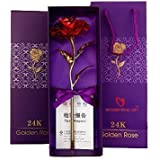 House Of Gifts Valentine Gift Red Rose 25 Cm With Beautiful Gift Box And Carry Bag