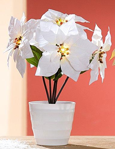 dekojohnson Wunderschöner Weihnachtsstern Dekoblume Kunstblume Plastikblume im Topf mit 5 LED Blüten, weiß, 23x23x36 cm
