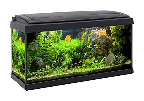acquario accessoriato completo milo 80x30 93litri