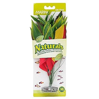 Marina Natural Dracena Silk Plant, Medium, 23 x 25.5 cm, Green 1