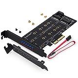 SupaGeek Duale M.2 zu PCIe 3.0 X4 und SATA III Adapterkarte mit Kontroll-Leuchten - Zum Hinzufügen von M.2 SSD Geräten zu PC oder Motherboard
