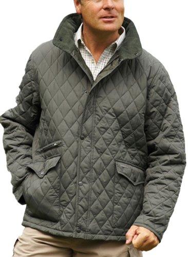 Champion Penrith Pays pour break vêtement chaud Design Manteau matelassé Vert - Vert olive