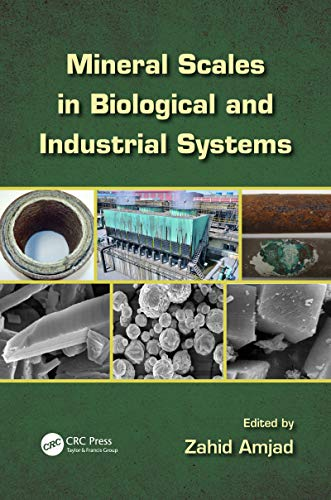 Mineral Scales in Biological and Industrial Systems (English Edition) - Sulfat Crystal