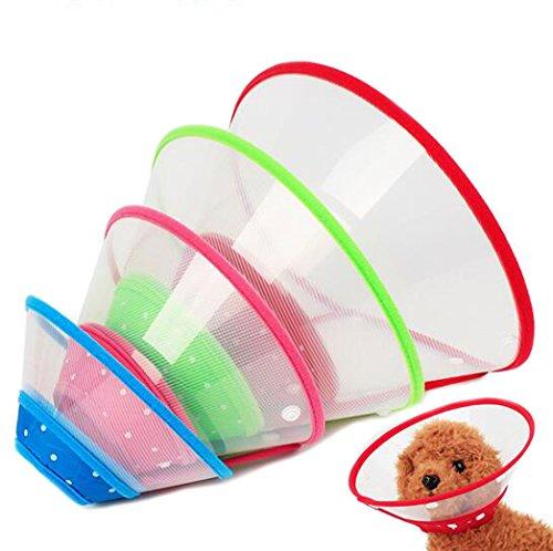 Crasy Shop verstellbares Kunststoff-Haustier-Schutzkragen für Hunde (auch Welpen) und Katzen (zufällige Farbe, 1Stück)