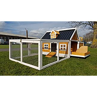 Cocoon CHICKEN HOUSE AND CHICKEN RUN WITH ECO PLASTIC EASY WIPE LOW MAINTENANCE ROOFS Cocoon CHICKEN HOUSE AND CHICKEN RUN WITH ECO PLASTIC EASY WIPE LOW MAINTENANCE ROOFS 519adq 2BRTNL