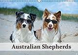Wunderbare Australian Shepherds (Wandkalender 2019 DIN A3 quer): Australian Shepherds in wunderschönen Bildern (Monatskalender, 14 Seiten ) (CALVENDO Tiere)