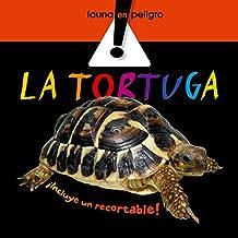 La tortuga (Fauna en peligro)