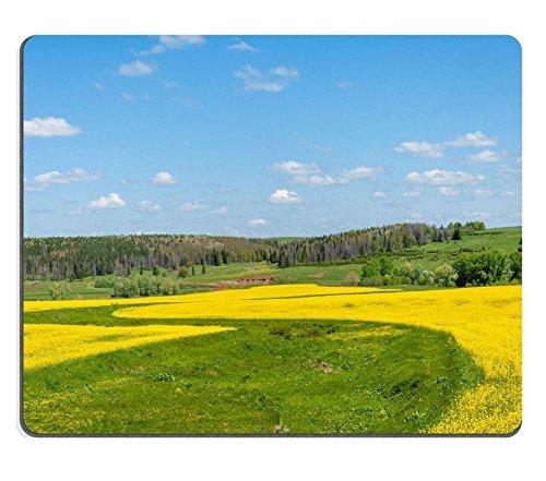 liili Mouse Pad de goma natural mousepad imagen ID 32946840Campos Y Hills cubierto en amarillo brillante Aceite de colza colza o de colza Flowers Colorful Blossom de campo de colza