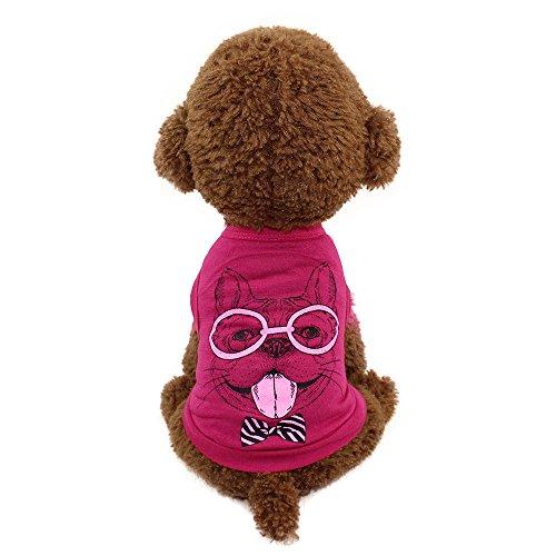 Hündchen Kleider Einfach T-Shirt,Weich und atmungsaktiv Strecken Zweibeiner Bodenbildung Pet Kleidung,Sommer Frühling Katze Baumwoll Weste Basic Kleiner Welpe Bekleidung (Rot, XS) -