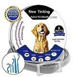 Wanxida Collares Antipulgas 8 Meses de Protección, Aantiparasitos para Perros y Gatos contra Pulgas,Garrapatas y Mosquitos, Pinzas para Mascotas(64cm)