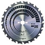 Bosch 2608640672 - Lama per sega circolare da tavolo, 300x30, 20 denti