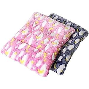 Kleine Tiermatte, Legendog 2Pcs Pet Bett Warm Plüsch Hamster Decke Pet Isomatte für Kleintiere M