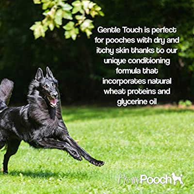 Pretty Pooch® Gentle Touch Dog Shampoo & Conditioner - 2 Litres (Baby Powder Fragrance) - A Non-itchy, Professional Deep Cleaning Shampoo for Dogs with Sensitive Skin! from Pretty Pooch