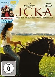 Flicka - Freiheit. Freundschaft. Abenteuer. [2 DVDs]