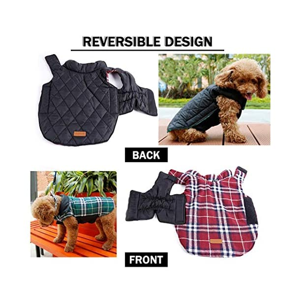 Morezi Cozy Waterproof Windproof Reversible British style Plaid Dog Vest Winter Coat Warm Dog Apparel for Cold Weather Dog Jacket for Double sided available 3