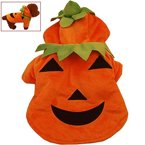 Orange Katze Kostüm Löwe - WMWJDQ Haustier-Kleidung Der Halloween-Kürbis-Katzen-Hundepullover, Hundestrickwaren,Hundekleid,Haustier-Sweatshirt,Haustier Hund Katze Halloween Kostüme,Orange,XS