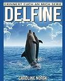 Delfine: Ein Kinderbuch mit erstaunlichen Fotos und interessanten Fakten über Delfine (Erinnert euch an mich Serie)