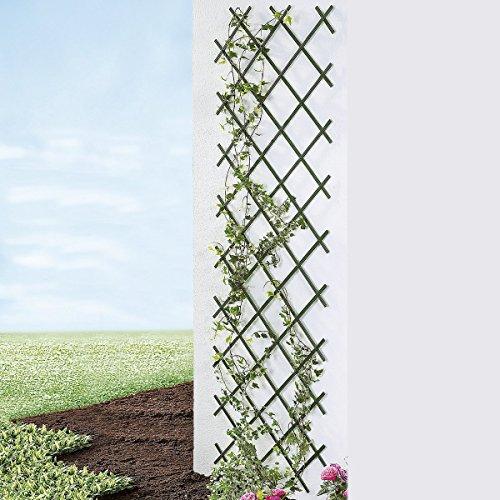 TRI Rank-Spalier Vario, Rankhilfe für Kletterpflanzen Rankgitter Rankleiter Rosensäule Rosenhilfe Rankgerüst