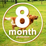"fretod flea and tick collars for dogs cats - 8 month protection -adjustable 23"" length fits for small medium large pets FRETOD Flea and Tick Collars for Dogs Cats – 8 Month Protection -Adjustable 23″ Length fits for Small Medium Large Pets 519cKsix2nL"