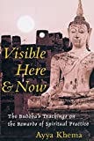 Visible Here and Now: The Buddha
