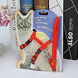 YY1706103 Einstellbare Hundehaustiergeschirr Brustgurt weich atmungsaktiv Nylon Leine Kragen Mode Walk Out Handschlaufe für Katzen Hunde