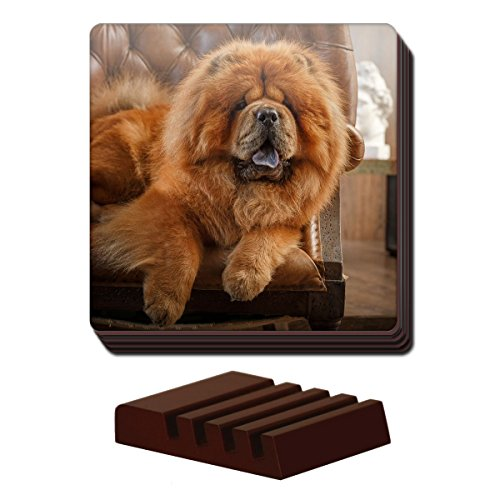 chow-chow-dog-set-of-4-coasters-wooden-holder