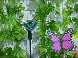 Tanzender Solar Schmetterling der Hingucker auf Ihrer Terrasse / Blumenbeet