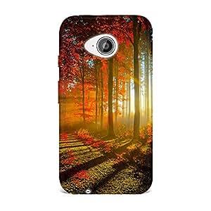 Motorola Moto E2 Case, Motorola Moto E2 Hard Protective SLIM Cover [Shock Resistant Hard Back Cover Case] for Motorola Moto E2 -Red Forest Sun Rays Autumn