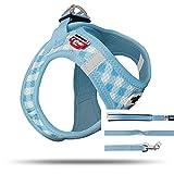 Curli Puppy Vest Geschirr Air-Mesh + Basic Leine SkyBlue-Caro VP-SBKA Größe 3XS