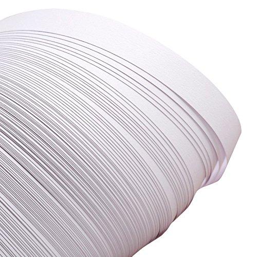 pandahall 1200pcs 1200pcs Quilling Papierstreifen für DIY Craft für Heimwerker Craft, 530x 10; Über 120strips/Tasche, Papier, weiß, 530x10mm