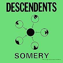 Somery (Greatest Hits) [Vinyl LP]